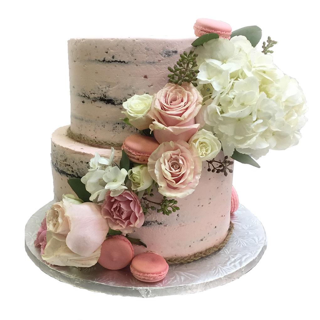 phipps-desserts-specialty-pink-meringue